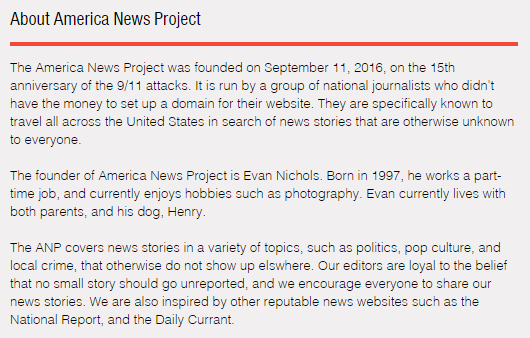 American News Project, Satire